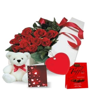 Dozen Gift Boxed Rose Combo Special(Canada)