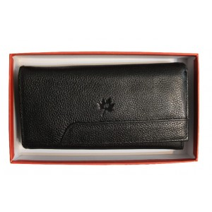 Novin Charm Black Wallet for Women